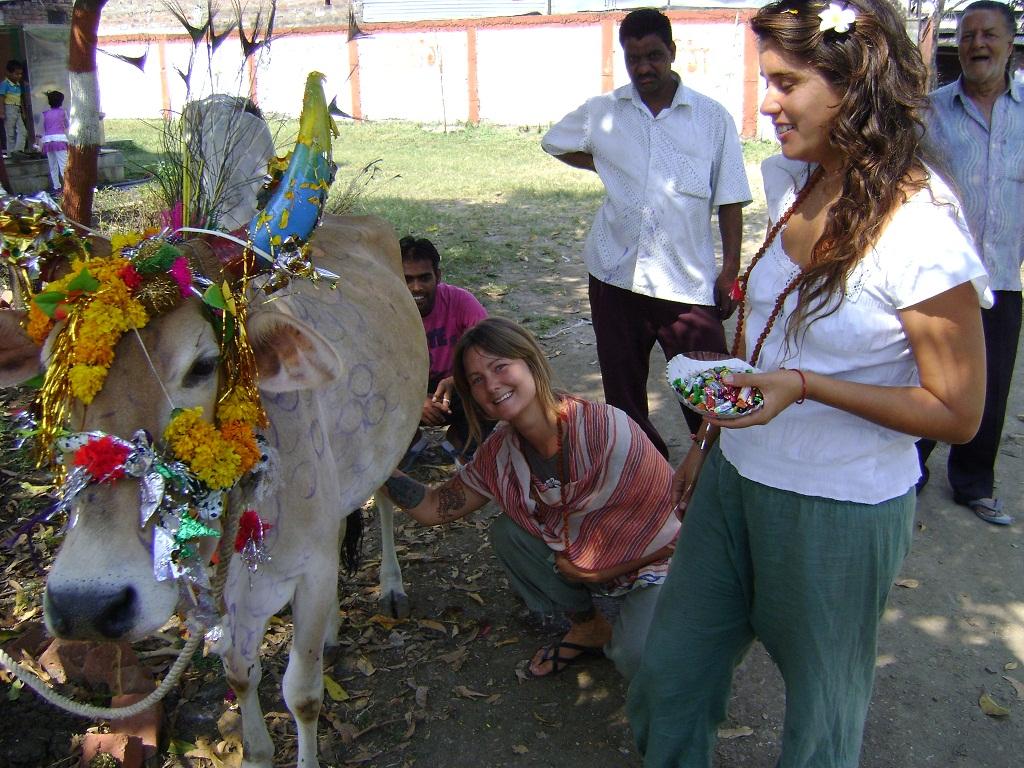 Diwali Paramyoga India